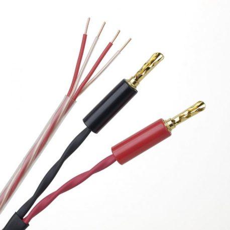 Connect-it-LS-768×736